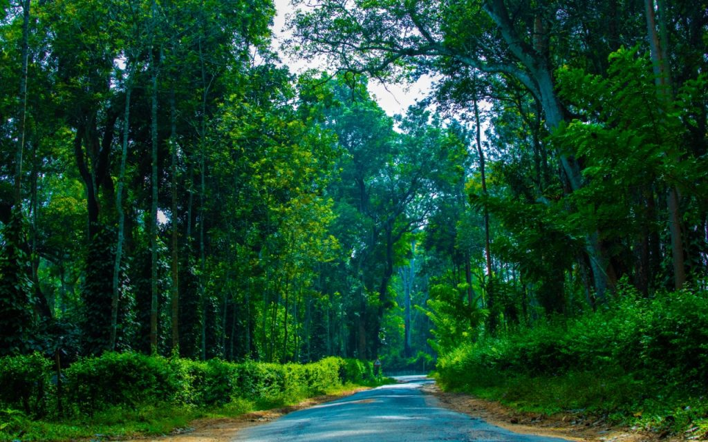 Coorg-connection-lead-ut