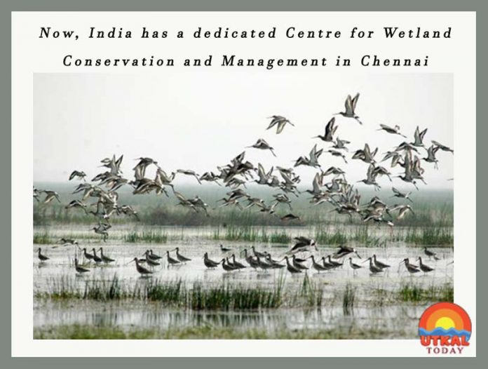 Centre-for-Wetland-Conservation-and-management-ut