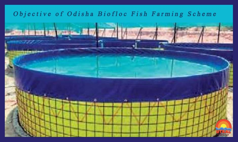 Odisha-Biofloc-Fish-Farming-Scheme-introduced-ut