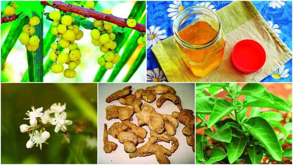 Superfoods-Utkal-Today